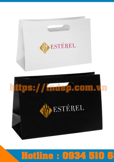 Dịch vụ in túi giấy mỹ phẩm tạo lên phong cách ấn tượng cho nhãn hiệu