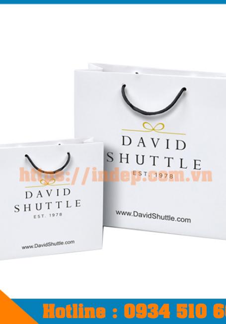 Dịch vụ in túi giấy in logo giá tốt lấy nhanh