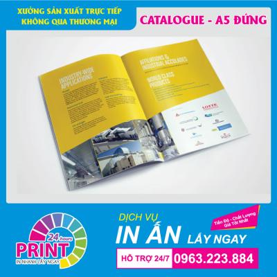 Dịch vụ in Brochure lấy gấp, lấy nhanh, in số lượng ít tại Hà Nội