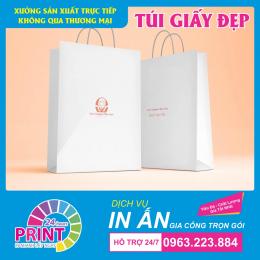 Dịch vụ in logo thương hiệu công ty lên túi giấy chất lượng