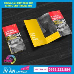 Hướng dẫn thiết kế và đặt in ấn Brochure chuyên nghiệp với giá thành rẻ nhất