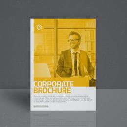 Các mẫu thiết kế brochure doanh nghiệp mà bạn nên biết