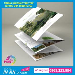 In ấn Các Tài Liệu Quảng Cáo : Tờ rơi, Brochure và Catalogue