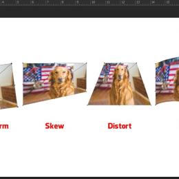 Các cách biến đổi kích cỡ layer trong photoshop